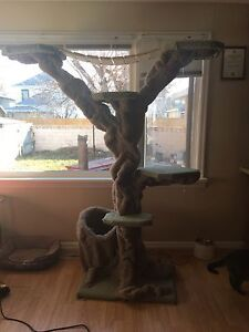PRICE REDUCED! Cat Tree for Sale!