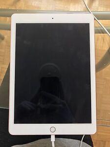 iPad Pro- 9.7 Inch- Rose Gold