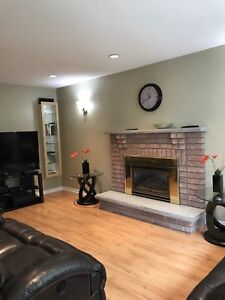 Fireplace top and bottom hearth (stone)