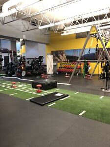 Complimentary Personal Training Session