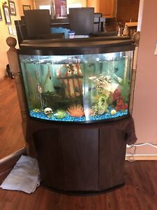 45 gallon fish tanks for sale with fish