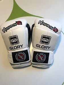 Glory Hayabusa gloves
