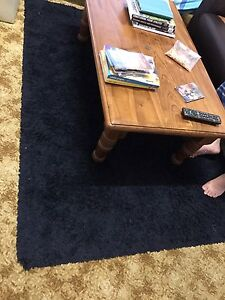 Free black rug in good condition Windsor Brisbane North East Preview