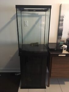 50 gallon tank with stand and accessories