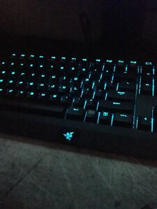 Razer Blackwidow RGB
