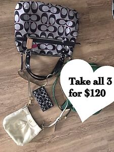 Take 3 coach items for $120