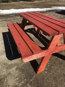 Adult stained pic nic table