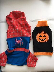 Small dog clothing and costumes