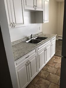 Updated 2 bedroom, All inclusive, Pet friendly!