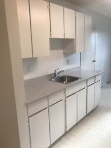 Two Bedroom Condo in East College Park