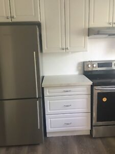 NEWLY RENOVATED 2 BEDROOM ON THE PARK