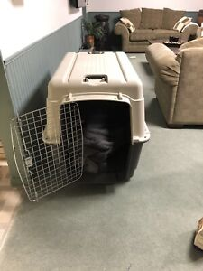 Like new XL hard shell dog kennel