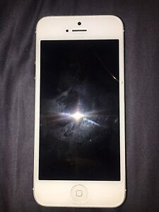 iPhone 5 Cameron Park Lake Macquarie Area Preview