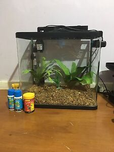 Fish tank Spearwood Cockburn Area Preview