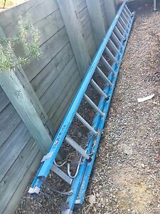 Fibreglass Extension Ladder Collingwood Park Ipswich City Preview