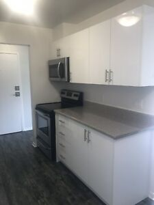 Upgraded spacious basement units in Trenton!