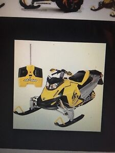 LOOKING FOR remote control Ski Doo