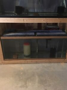 55 gallon aquarium fish tank