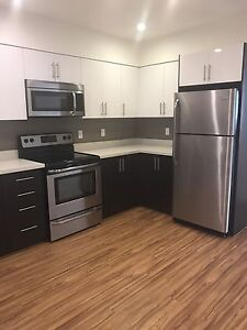 Open Concept 1 Bed!