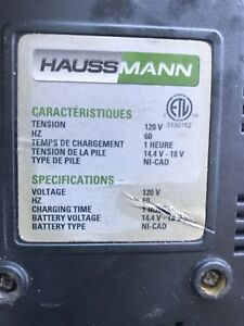 Looking for HaussMann charger