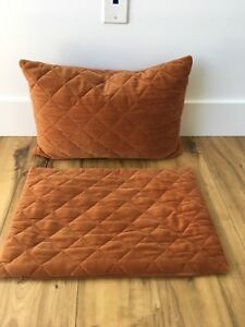 Rust pillow covers with 1 insert -like new