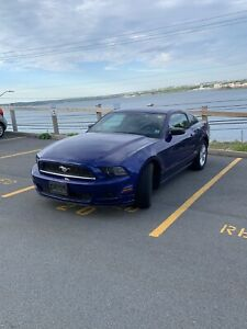 2014 Ford Mustang 1 owner car