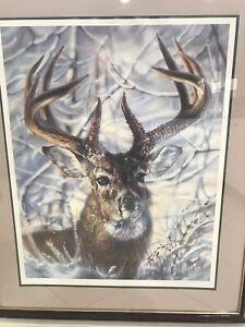 Framed Deer Picture