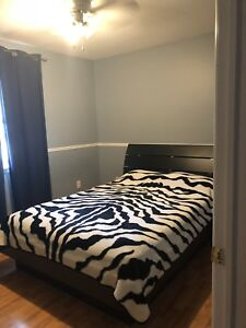 Fully furnished rooms for international female students