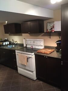 Must see apartment in Henderson area