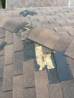 ROOF REPAIR- LEAKS- SHINGLE BLOW OFF FROM $120