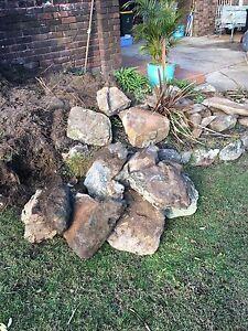 Bush rock Belrose Warringah Area Preview