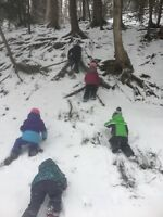 Forest school spots available