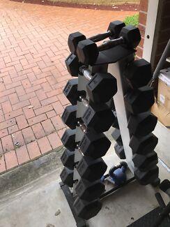 Weights/Gym equipment