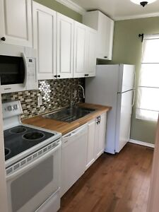 Beautifully Renovated 2 Bedroom On Cobourg and Henderson