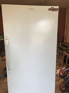 Frigidaire Commercial Stand up Freezer