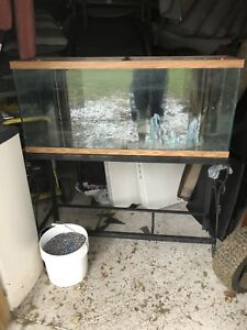 55 gallon aquarium/fish tank