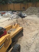 Tree stump removal great rates