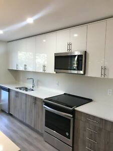 BRAND NEW LUXURY 1 BEDROOM $1295 NOVEMBER DECEMBER