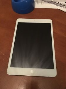 16GB iPad mini First Generation