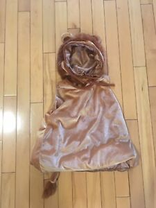 Toddler Lions Costume