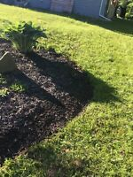 Full lawn care services