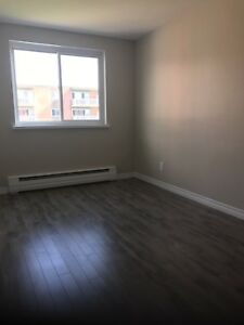 Spacious 2 & 3 bedroom apartments  in pet friendly building!!