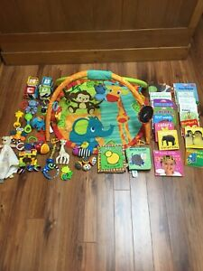 Baby toys and board books