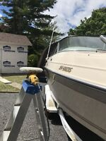 Boat Detailing in Brockville