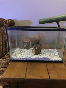 Aquarium with decoration and gravel