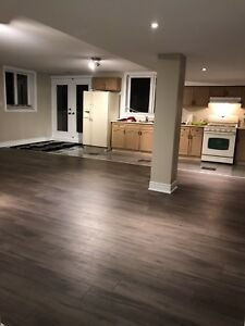 Fully renovated basement for rent in the heart of ancaster !!!