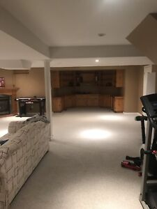 One Bedroom Beautiful furnished Basement available for rent