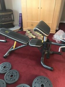 Workout Bench + 290lbs