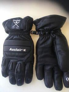 Auclair Men's Ski Gloves