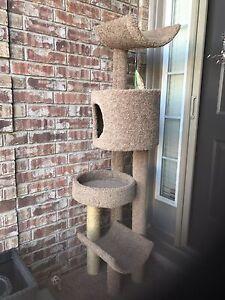 Multi level cat condo